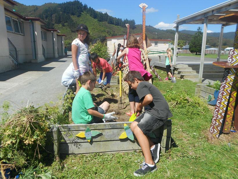 School Garden Photo